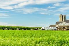 Van de het landbouwbedrijfschuur van het Amishland het gebiedslandbouw in Lancaster, PA stock afbeeldingen