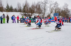 11 van de het Landgoed jaarlijkse ski van Februari 2017 kunst-Veretevo van het rasnikolov Perevoz 2017 de skimarathon van Russial Royalty-vrije Stock Afbeeldingen