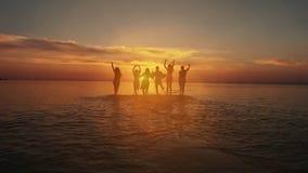 Van de het Strandzomer van de vriendschapsvrijheid de Vakantieconcept Schoonheid en blije tienervrienden die pret, het dansen heb stock videobeelden