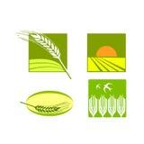 Van de het voedselrijst van de tarwe het embleemvector Stock Afbeeldingen