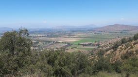 Van de heuvel de bosinstallaties van Chili Santiago valleien van de bomengebieden royalty-vrije stock afbeelding
