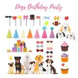 Van de hondpartij en Verjaardag elementen Stock Afbeeldingen