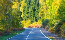 Van de de hooglandenweg van Schotland de de reisherfst verlaat geelgroene kleuren Ecosse du nord royalty-vrije stock afbeelding