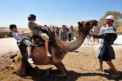 Van de kameelrit en Woestijn Activiteiten in de Judean-Woestijn Israël Stock Foto