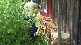 Van de de kereltrekkracht van de dorpsbewonermens stapelt de volledige kruiwagen gehakt hout en het 4K stock videobeelden