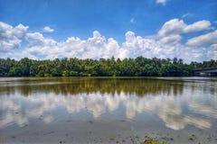 Van de kokospalmenlijn en Wolk Bezinningenspiegelbeeld in Rivier stock afbeeldingen