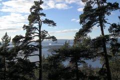 Van de meningsoslo van het Ekebergpark de fjord Noorwegen Stock Afbeelding