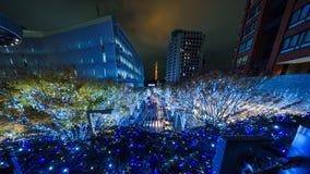 Van de de Nachtmening van Japan de verlichting Tokyo stock afbeeldingen