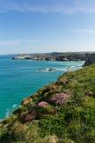 Van de Noord- newquaykust Cornwall het UK in de lente met blauwe hemel en overzees Royalty-vrije Stock Afbeelding
