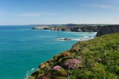 Van de Noord- newquaykust Cornwall het UK in de lente met blauwe hemel en overzees Royalty-vrije Stock Fotografie