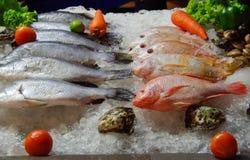 van de 'overzeese brasem' - vissen - winkel het venster Stock Fotografie