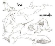 Van de overzeese geplaatste pictogrammen zoogdieren de dierlijke inzameling stock illustratie