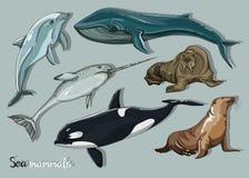 Van de overzeese geplaatste pictogrammen zoogdieren de dierlijke inzameling royalty-vrije illustratie