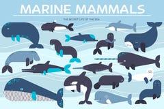 Van de overzeese geplaatste pictogrammen zoogdieren de dierlijke inzameling Vectorvissenillustratie op oceaan het levensachtergro stock illustratie