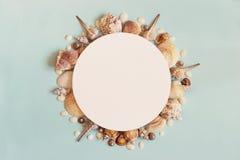 Van de overzeese het concept de zomerreis Kader van overzeese shells op een blauwe backgro Royalty-vrije Stock Foto
