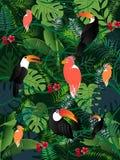 Van de palmbladenvogels van de de zomer het tropische banner vectorbeeld royalty-vrije illustratie
