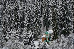 Van de de pijnboomboom van de bergenwinter het boslandschap met een houten chalet royalty-vrije stock afbeelding