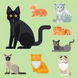 Van de potkarakters van de katten vectorillustratie leuk dierlijk grappig decoratief katachtig binnenlands getrokken het katjes i vector illustratie