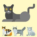 Van de potkarakters van de katten vectorillustratie leuk dierlijk grappig decoratief katachtig binnenlands getrokken het katjes i royalty-vrije illustratie