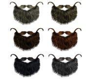 Van de reeks lange baard en snor verschillende kleuren het varkenskot van de manierschoonheid Royalty-vrije Stock Foto's