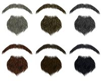 Van de reeks lange baard en snor verschillende kleuren het varkenskot van de manierschoonheid Stock Afbeelding