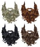 Van de reeks lange krullende baard en snor verschillende kleuren Royalty-vrije Stock Afbeelding