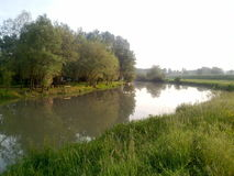 Van de rivierkolubara van het aardwater de bossenkust Stock Fotografie
