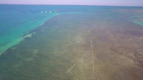 Van de Sleutelsertsaders van Florida de lucht4k video stock footage