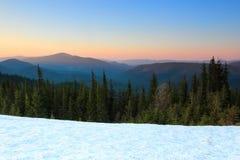 Van de sneeuw opent het behandelde gazon een mening van groene sparren, behandelde het hooggebergte met sneeuw bovenkanten, zonso Stock Fotografie