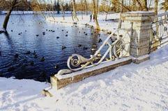 van de de sneeuwbrug van de parkwinter van het de watervogelszonlicht het metaalomheining Stock Fotografie