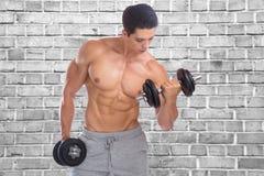 Van de spierenbicepsen van de Bodybuildingsbodybuilder het lichaamsbouwer die wa bouwen Royalty-vrije Stock Fotografie