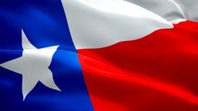 Van de staat van Texas Volledige HD 1920X1080 de lengtevideo die van de de vlagclose-up 1080p in wind golven Het Amerikaanse Nati stock videobeelden