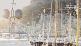 Van de de stadsstad van Monaco van de de straatpalm van Monte Carlo de zonnige dag stock videobeelden
