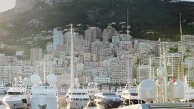 Van de de stadsstad van Monaco van de de straatpalm van Monte Carlo de zonnige dag stock video