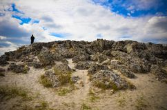 Van de Steenforest the van Pobitikamani de steenwoestijn Varna Bulgarije Stock Afbeeldingen