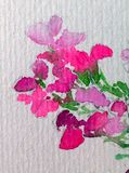Van de de takschoonheid waterverf het abstracte van de achtergrond bloemenbloemflox bloeiende van de de decoratiehand mooie behan vector illustratie