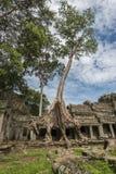 Van de tempelangkor van Preahkahn het Archeologische Park, Kambodja Royalty-vrije Stock Afbeeldingen