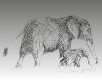 Van de twee olifantenmoeder en baby het lopen Stock Afbeeldingen