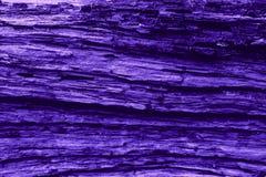 Van de ultraviolette patroon aard het houten textuur stock fotografie