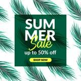 Van de de verkoopaanbieding van de de zomervakantie van de de kortingsaffiche de bannermalplaatje met illustratie van palmbladen stock illustratie