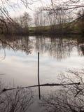 van de de vijvergaspeldoorn van de jachtopziener van de heuvelsmistley bos het meerwaterspiegel royalty-vrije stock foto's