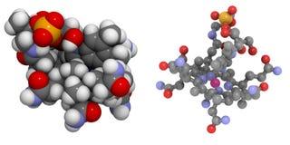 Van de vitamine B12 (cyanocobalamin) de molecule Royalty-vrije Stock Fotografie