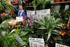 Van de de wegbloem van Colombia de markt Londen, het UK Royalty-vrije Stock Foto's