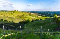 Van de Wijngaardensulztal van Oostenrijk van de de Zuid- wijnstraat het gebieds Stiermarken, wijnland De bestemming van de toeris stock fotografie