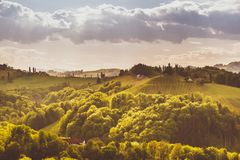 Van de Wijngaardensulztal van Oostenrijk van de de Zuid- wijnstraat het gebieds Stiermarken, wijnland De bestemming van de toeris stock foto's