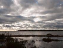 van de de winterbaai van de humeurige hemel donkere herfst het water oceaanbomen Stock Fotografie