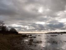 van de de winterbaai van de humeurige hemel donkere herfst het water oceaanbomen Stock Foto's