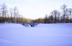 van de de wintersneeuw van de parktuin bomen van de de dagbrug de koude Royalty-vrije Stock Foto