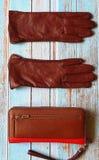 Van de de zonnebrilbeurs van leerhandschoenen van de de manierlente de klerenconcept van Autumn Womens Accessories royalty-vrije stock foto's
