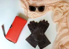 Van de de zonnebrilbeurs van leerhandschoenen van de de manierlente de klerenconcept van Autumn Womens Accessories royalty-vrije stock afbeelding